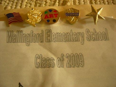Tim's Achievement Pins